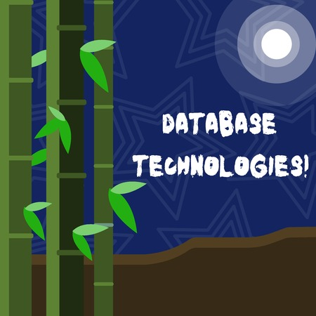 Text sign showing Database Technologies. Business photo showcasing Organization of a collection of data in digital format Colorful Sets of Leafy Bamboo on Left Side and Moon or Sun with Round Beam Stock Photo