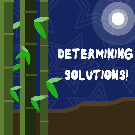 Text sign showing Determining Solutions. Business photo showcasing identifying business needs and determining solutions Colorful Sets of Leafy Bamboo on Left Side and Moon or Sun with Round Beam