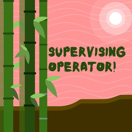 Text sign showing Supervising Operator. Business photo text monitoring and coordinating the plant operations Colorful Sets of Leafy Bamboo on Left Side and Moon or Sun with Round Beam