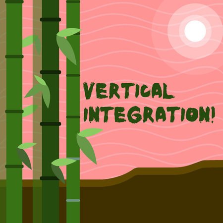 Text sign showing Vertical Integration. Business photo text Merger of companies at different stages of production Colorful Sets of Leafy Bamboo on Left Side and Moon or Sun with Round Beam
