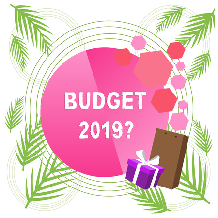 Handwriting text writing Budget 2019 Question. Conceptual photo estimate of income and expenditure for next year Stock Photo