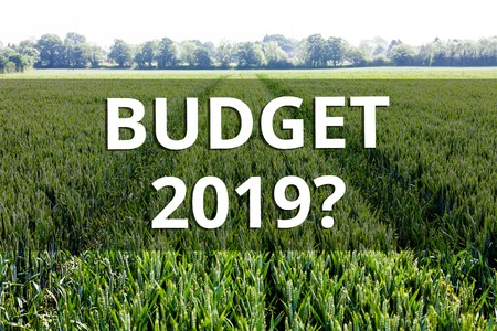 Handwriting text Budget 2019 Question. Conceptual photo estimate of income and expenditure for next year 스톡 콘텐츠