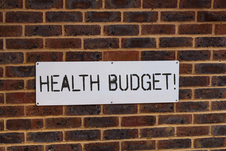 Word writing text Health Budget. Business photo showcasing amount of money to support your health and wellbeing needs