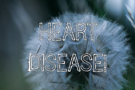 Word writing text Heart Disease. Business photo showcasing class of diseases that involve the heart or blood vessels Banco de Imagens
