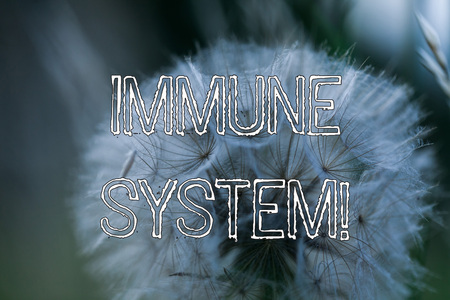Word writing text Immune System. Business photo showcasing host defense system comprising analysisy biological structures