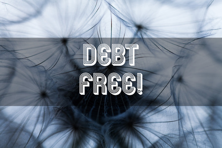 Text sign showing Debt Free. Business photo text does not owning any money or things to any individual or companies