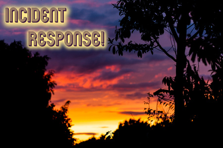 Word writing text Incident Response. Business photo showcasing addressing and analysisaging the aftermath of a security breach Beautiful sunset sunrise through fresh forest nature wood. Sunlight morning