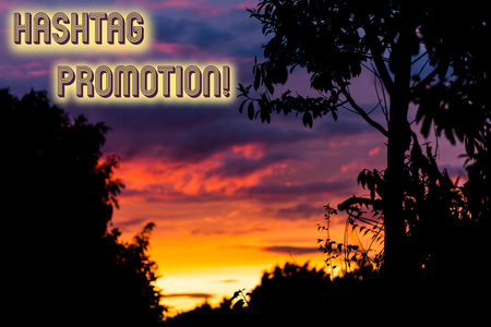 Word writing text Hashtag Promotion. Business photo showcasing more showing can discover and engage with your content Beautiful sunset sunrise through fresh forest nature wood. Sunlight morning