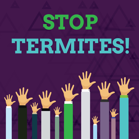 Text sign showing Stop Termites. Business photo text prevent a small tropical insect from damaging the woods Hands of Several Businessmen Raising Up Above the Head, Palm Facing Front