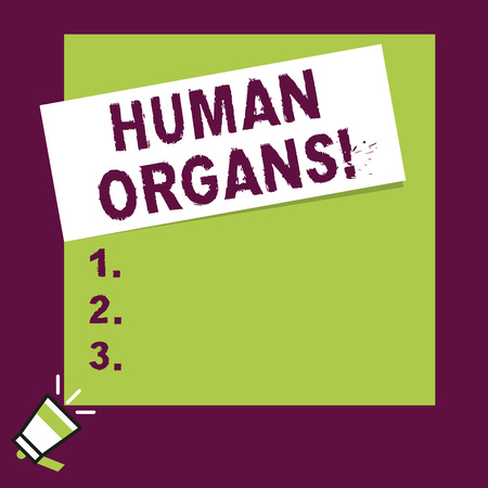 Word writing text Huanalysis Organs. Business photo showcasing The internal genital structures of the huanalysis body Speaking trumpet on left bottom and paper attached to rectangle background Imagens