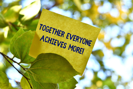 Word writing text Together Everyone Achieves More. Business photo showcasing Members create synergy with strong sense mutual commitment Piece of square paper use to give notation on tree leaf under sunny day