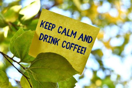 Word writing text Keep Calm And Drink Coffee. Business photo showcasing encourage demonstrating to enjoy caffeine drink and relax Piece of square paper use to give notation on tree leaf under sunny day Banco de Imagens