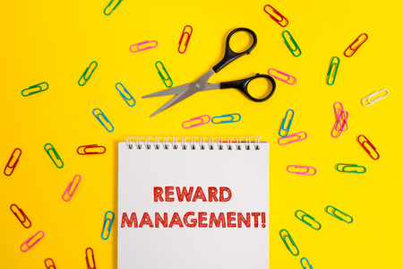 Word writing text Reward Perforanalysisce. Business photo showcasing Appraisal Recognize workers Relative Worth to the company Blank no color spiral notepad scissors clips colored background design