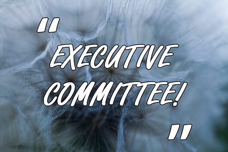 Conceptual hand writing showing Executive Committee. Concept meaning Group of Directors appointed Has Authority in Decisions Close up abstract dandelion seeds background Blowing away