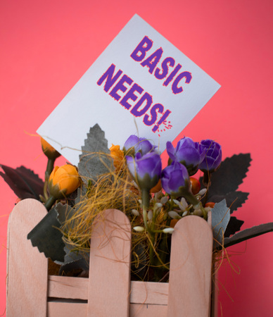 Word writing text Basic Needs. Business photo showcasing measurement of absolute poverty in developing countries Empty plain paper in between flowers arrangement with ice cream sticks vase