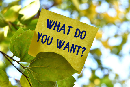Word writing text What Do You Want Question. Business photo showcasing say or write in order to ask demonstrating about something Piece of square paper use to give notation on tree leaf under sunny day