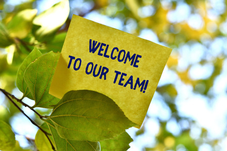 Word writing text Welcome To Our Team. Business photo showcasing introducing another demonstrating to your team mates Piece of square paper use to give notation on tree leaf under sunny day