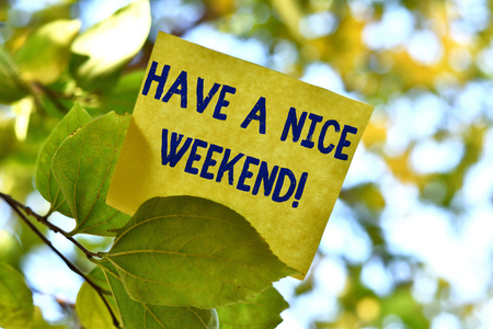 Word writing text Have A Nice Weekend. Business photo showcasing wishing someone that something nice happen holiday Piece of square paper use to give notation on tree leaf under sunny day