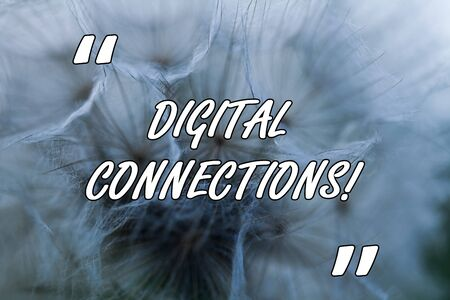 Conceptual hand writing showing Digital Connections. Concept meaning Powerful Ways to Connect Online Global High Definition Close up abstract dandelion seeds background Blowing away