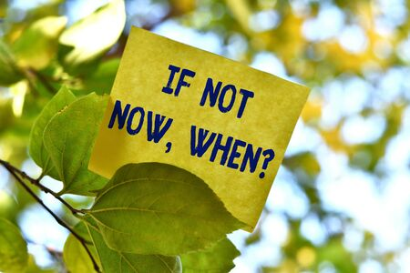 Word writing text If Not Now When Question. Business photo showcasing start acting from this moment do not hesitate Piece of square paper use to give notation on tree leaf under sunny day