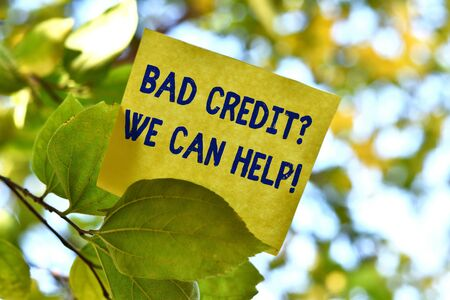 Word writing text Bad Credit Question We Can Help. Business photo showcasing offering help after going for loan then rejected Piece of square paper use to give notation on tree leaf under sunny day Banco de Imagens