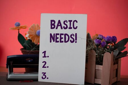 Text sign showing Basic Needs. Business photo showcasing measurement of absolute poverty in developing countries Flowers and writing equipments plus plain sheet above textured backdrop