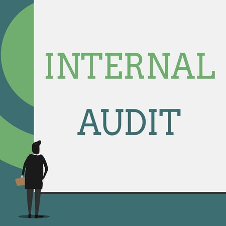 Text sign showing Internal Audit. Business photo showcasing Evaluates the effectiveness of the controls and processes Back view young woman watching blank big rectangle. Geometrical background