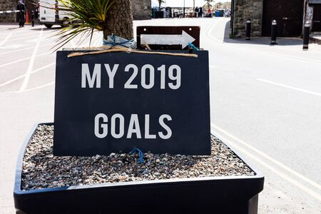 Conceptual hand writing showing My 2019 Goals. Concept meaning setting up demonstratingal goals or plans for the current year