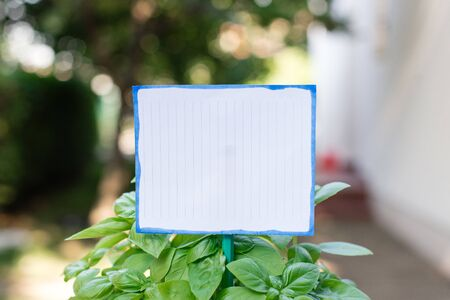 Plain empty paper attached to a stick and placed in the green leafy plants