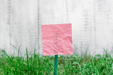 Plain empty paper attached to a stick and placed in the green grassy land 写真素材