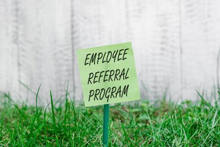 Word writing text Employee Referral Program. Business photo showcasing employees are rewarded for introducing recruits Plain empty paper attached to a stick and placed in the green grassy land