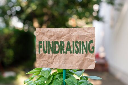 Word writing text Fundraising. Business photo showcasing act of collecting or producing money for a particular purpose Plain empty paper attached to a stick and placed in the green leafy plants