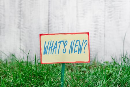 Writing note showing What S New Question. Business concept for when you ask someone about his current live events actions Plain paper attached to stick and placed in the grassy land 写真素材