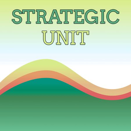 Text sign showing Strategic Unit. Business photo showcasing profit center focused on product offering and market segment. Wavy Abstract Design Three Tone Background with Two Curvy Lines in Center