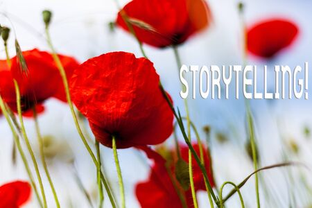Writing note showing Storytelling. Business concept for activity writing stories for publishing them to public Front view summer red color poppy flowers sky background