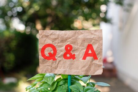 Word writing text Q And A. Business photo showcasing defined as questions being asked and answers Plain empty paper attached to a stick and placed in the green leafy plants Stock fotó - 129364344