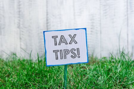 Handwriting text Tax Tips. Conceptual photo compulsory contribution to state revenue levied by government Plain empty paper attached to a stick and placed in the green grassy land