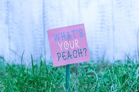 Writing note showing What S Is Your Peach question. Business concept for an exceptionally good demonstrating or thing Plain paper attached to stick and placed in the grassy land
