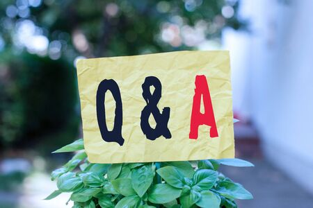 Word writing text Q And A. Business photo showcasing a period of time or an occasion when someone answers questions Plain empty paper attached to a stick and placed in the green leafy plants