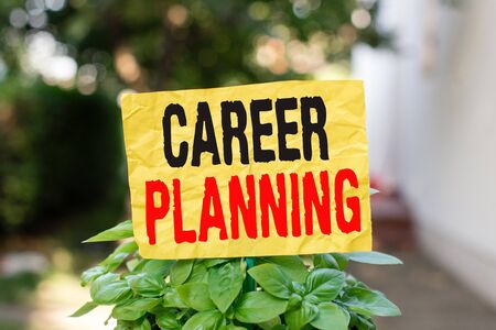 Word writing text Career Planning. Business photo showcasing Strategically plan your career goals and work success Plain empty paper attached to a stick and placed in the green leafy plants Stock fotó