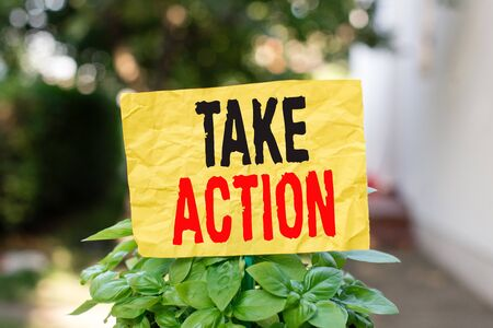 Word writing text Take Action. Business photo showcasing to do somethingoract in order to get a particular result Plain empty paper attached to a stick and placed in the green leafy plants
