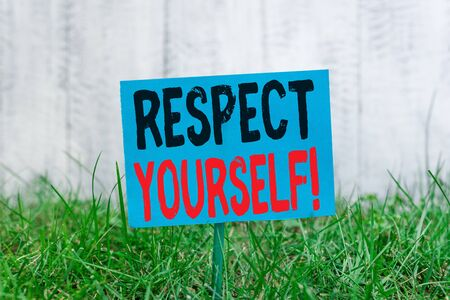 Handwriting text Respect Yourself. Conceptual photo believing that you good and worthy being treated well Plain empty paper attached to a stick and placed in the green grassy land 写真素材