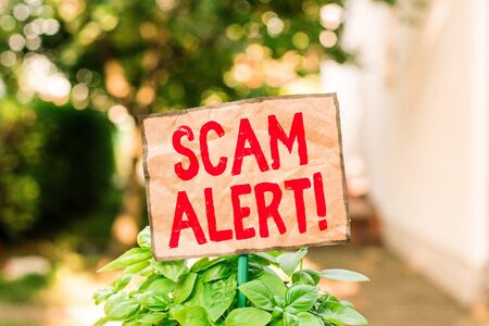 Writing note showing Scam Alert. Business concept for fraudulently obtain money from victim by persuading him Plain paper attached to stick and placed in the grassy land Stockfoto