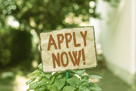 Writing note showing Apply Now. Business concept for request something officially in writing or by sending in form Plain paper attached to stick and placed in the grassy land