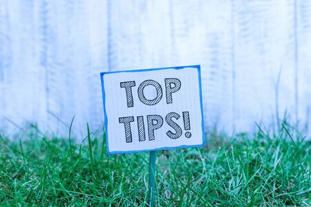 Handwriting text Top Tips. Conceptual photo small but particularly useful piece of practical advice Plain empty paper attached to a stick and placed in the green grassy land Stock fotó