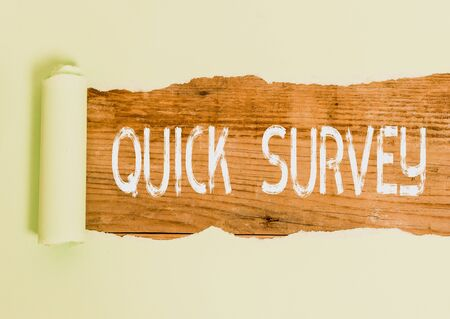 Text sign showing Quick Survey. Business photo text Conduct fast check on condition value situation of something Foto de archivo - 130158406