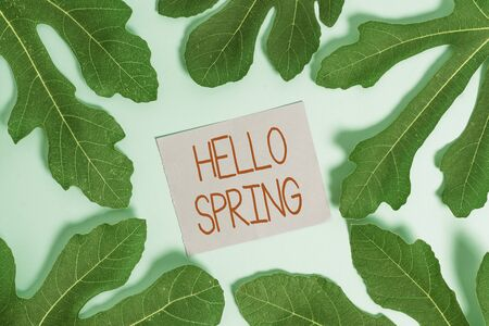 Handwriting text Hello Spring. Conceptual photo Welcoming the season after the winter Blossoming of flowers Фото со стока