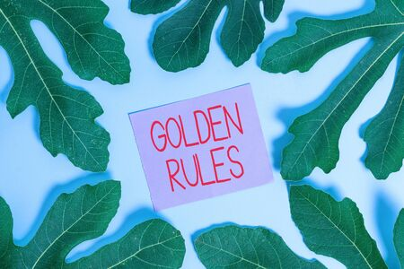 Texto de escritura Reglas de oro. Foto conceptual Principio básico que debe seguirse Principio importante