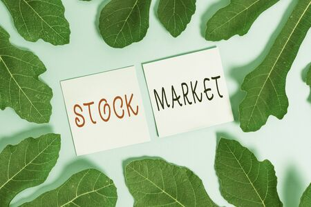 Handwriting text writing Stock Market. Conceptual photo Particular market where stocks and bonds are traded or exhange
