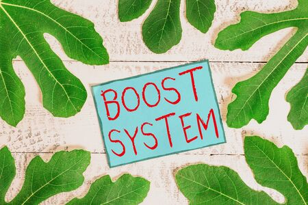 Writing note showing Boost System. Business concept for Rejuvenate Upgrade Strengthen Be Healthier Holistic approach